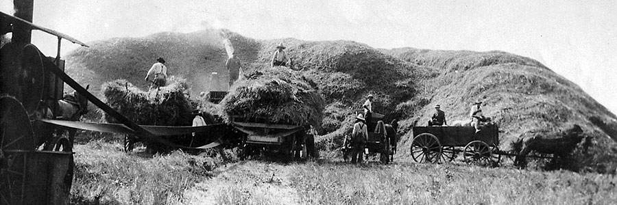 First Generation - Wagon - Threshing - Vocational