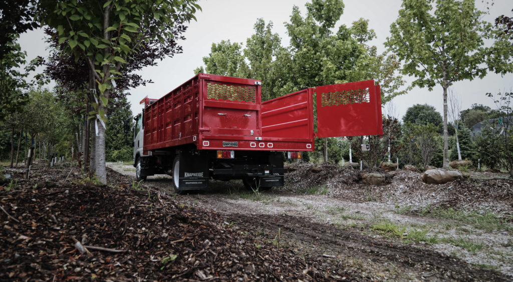 forestry-header
